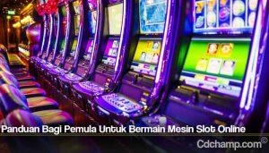 Panduan Bagi Pemula Untuk Bermain Mesin Slot Online